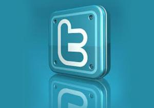 Twitter (un logo)