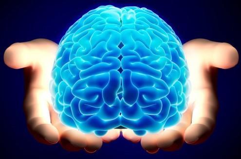 Questa immagine ha l'attributo alt vuoto; il nome del file è cervello-umano.jpg