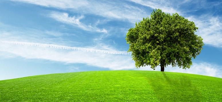 Questa immagine ha l'attributo alt vuoto; il nome del file è ambiente.jpg