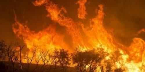 Questa immagine ha l'attributo alt vuoto; il nome del file è incendio-zombie-scaled.jpg