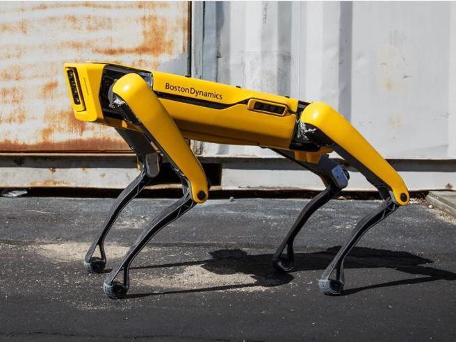 Questa immagine ha l'attributo alt vuoto; il nome del file è cane-robot-spot.jpg
